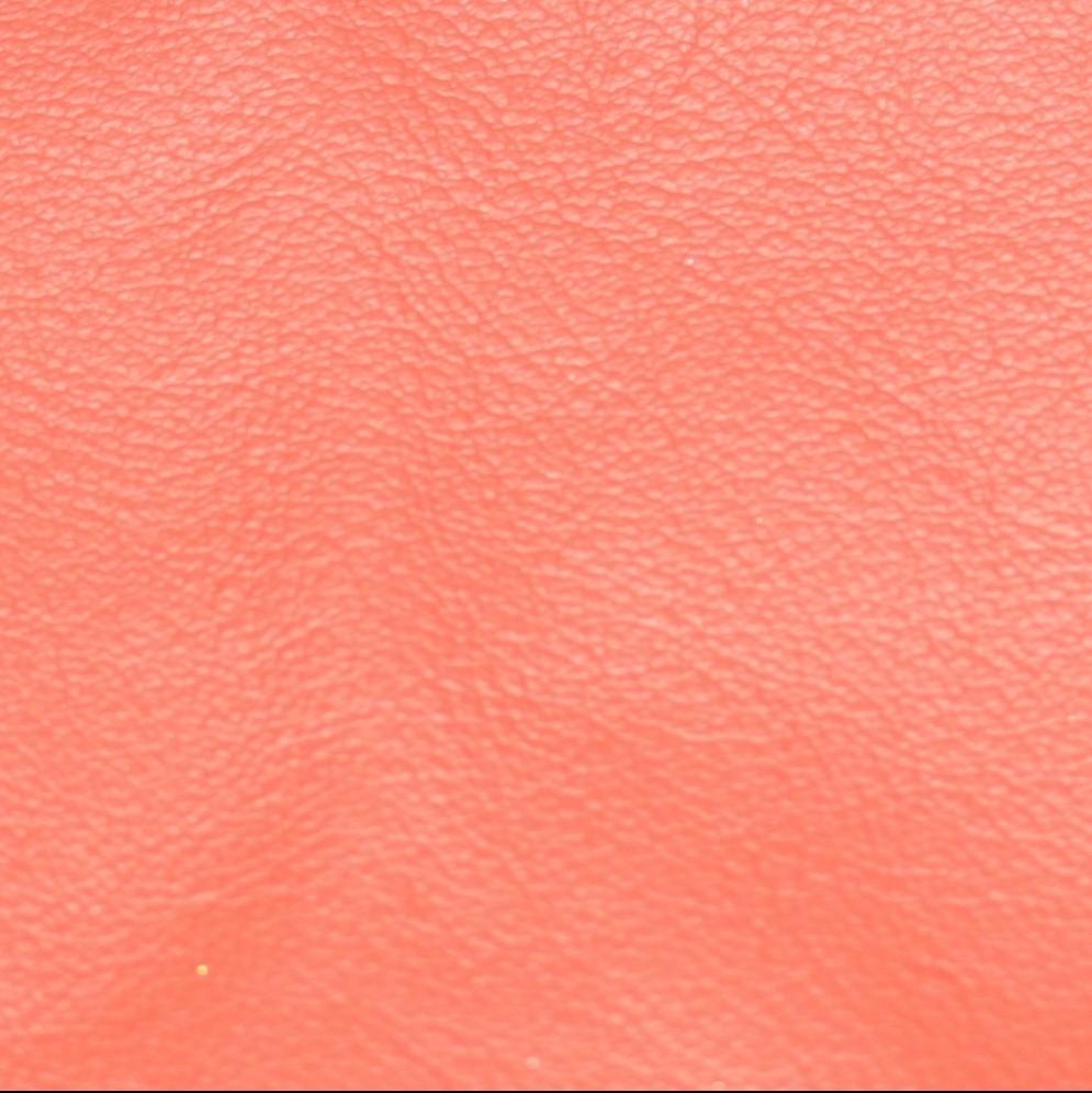 Lederfarbe: Rot